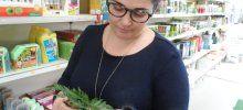 Diagnóstico sobre enfermedades de las plantas